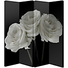 more details on Roses Room Divider - Black and White.