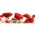 more details on Red Poppies Glass Wall Art.