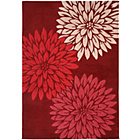 more details on Heart of House Chrissie Rug - 170x120cm - Red.