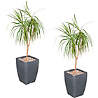 more details on Tall Rattan Effect Garden Planters - Pack of 2.