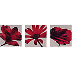 more details on Heart of House Floral Posy Canvas - Set of 3.
