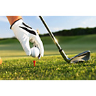 more details on Golf Lesson with a PGA Pro.