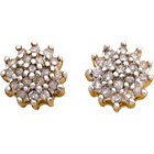 more details on 9ct Gold 0.20ct tw Diamond Cluster Stud Earrings.