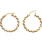 more details on 9ct Gold Wave Twist Earrings.
