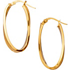 more details on 9ct Gold Polished and Satin Oval Wave Creole Earrings.