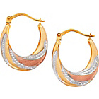 more details on 9ct 3 Coloured Gold Creole Earrings.