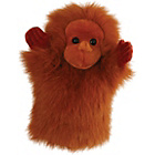 more details on The Puppet Company CarPets Orangutan Glove Puppet.