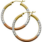 more details on 9ct Gold Plated Sterling Silver 3 Colour Hoop Earrings.