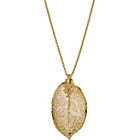 more details on 24ct Gold Plated Real Leaf Pendant.
