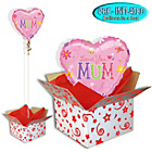 more details on Mum Balloon in a Box.