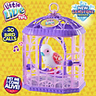 more details on Little Live Pets Bird Cage