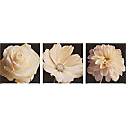 more details on Silhouette Flowers Canvases - Set of 3.