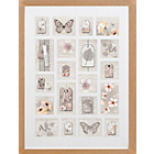 more details on Graham & Brown Botanical Collectables Wall Frame - Large.