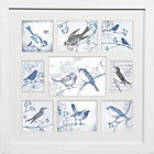 more details on Graham & Brown Feathered Friends Collectables Frame - Small.