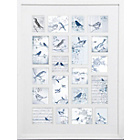 more details on Graham & Brown Feathered Friends Collectables Frame - Large.
