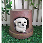 more details on Dog Garden Ornament/Planter.