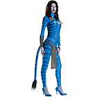 more details on Avatar Secret Wishes Neytiri Costume - Size 10-12.
