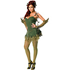 more details on DC Justice League Poison Ivy Costume - Size10-12.