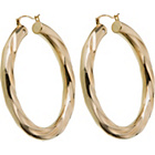 more details on 9ct Gold Plated Silicone Filled Nano Creole Earrings.