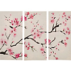 more details on Heart of House Sakura Blossom Triptych Canvas - Set of 3.