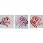more details on Heart of House Set of 3 Emily Floral Canvases.