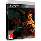 more details on The Wolf Among Us PS3 Game.