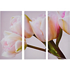 more details on Heart of House Jemima Tulips Triptych Canvas - Set of 3.