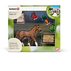 more details on Schleich Foal Eating Playset.