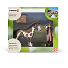more details on Schleich Foal Cleaning Playset.
