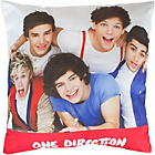 more details on One Direction Craze 40cm Printed Cushion.