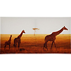 more details on Heart of House Luangwa Sunset Canvas.