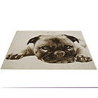 more details on Doug The Pug Rug - 80x150cm - Natural.