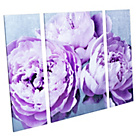 more details on Heart of House Moorland Peonies Triptych Canvas - Set of 3.