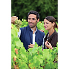 more details on Activity Superstore Vineyard Tour and Tasting for Two.
