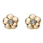 more details on 9ct Gold Diamond Accent Daisy Stud Earrings.