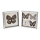 more details on Heart of House Framed Butterfly Wall Art - Set of 2.
