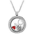 more details on Treasure Charms Stainless Steel Crystal Love Charm Locket.