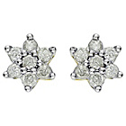 more details on 9ct Yellow Gold 0.25ct Diamond Flower Stud Earrings.