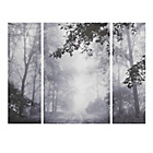 more details on Collection Silver Trees Triptych Canvas - Set of 3.