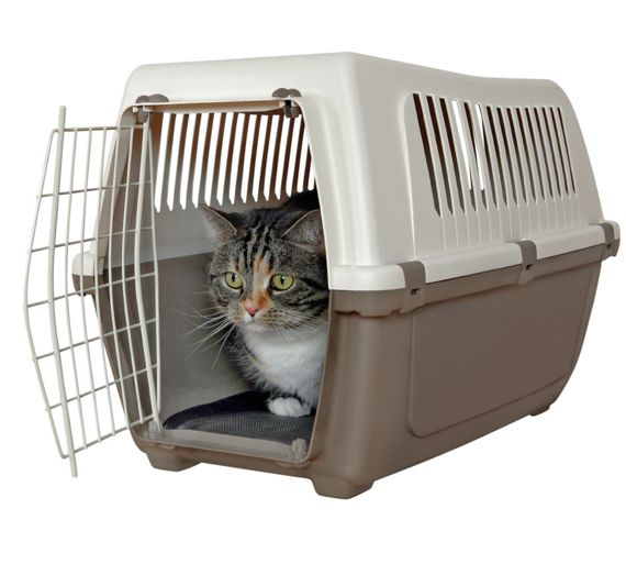 buy rosewood plastic pet carrier with cushion medium at. Black Bedroom Furniture Sets. Home Design Ideas