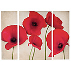 more details on Poppies Triptych Canvas - Set of 3.