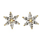more details on 9ct Gold Cubic Zirconia Flower Stud Earrings.