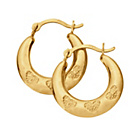 more details on 9ct Gold Diamond Accent Creole Hoop Earrings.