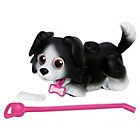 more details on Pet Parade Border Collie Single Puppy Pack.