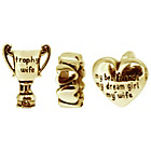 more details on Link Up Gold Plated Silver Trophy Wife Charms - Set of 3.