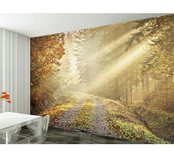 Buy 1wall winter forest road wall mural at for 1wall forest wallpaper mural