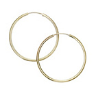 more details on 9ct Gold Plain Uncapped Hoop Earrings.