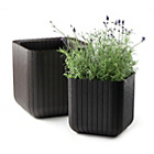more details on Keter Cube Planters - Pack of 2.