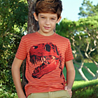 more details on Cherokee Boys Stripe and Dinosaur Graphic T-Shirt - 9-10.