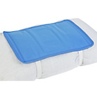 more details on Cool Gel Pillow Pad.